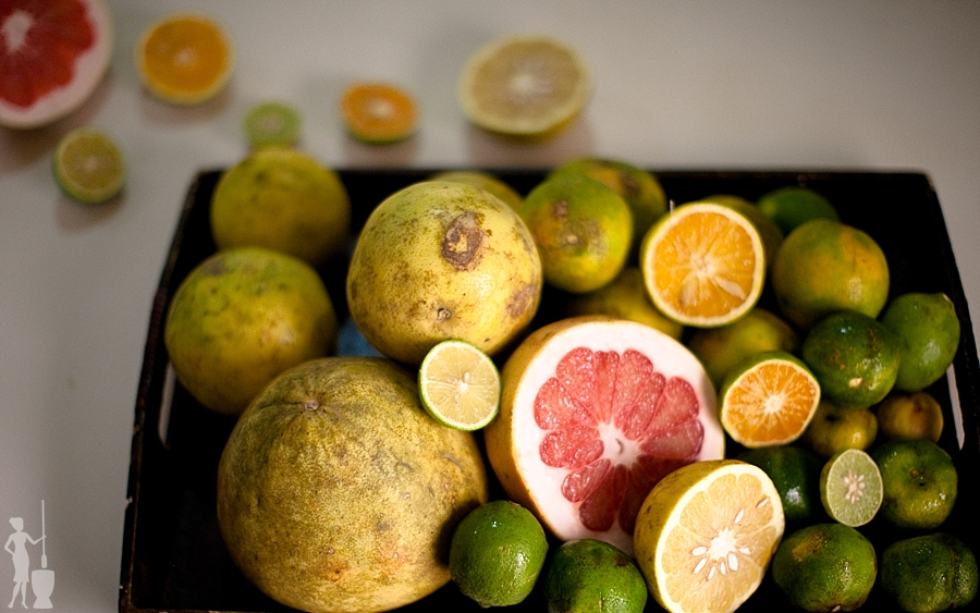 Nigerian food blog - citrus